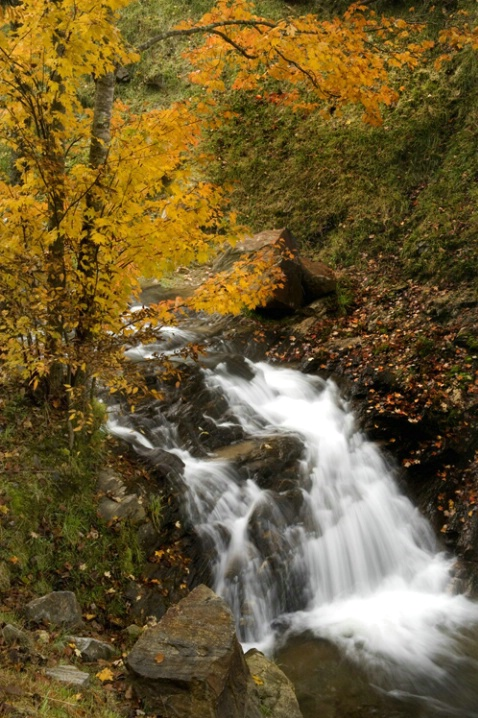 falls on Banks Cr - ID: 2935151 © Bob l. Peterson