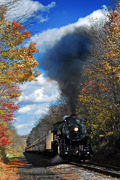 Autumn Steam