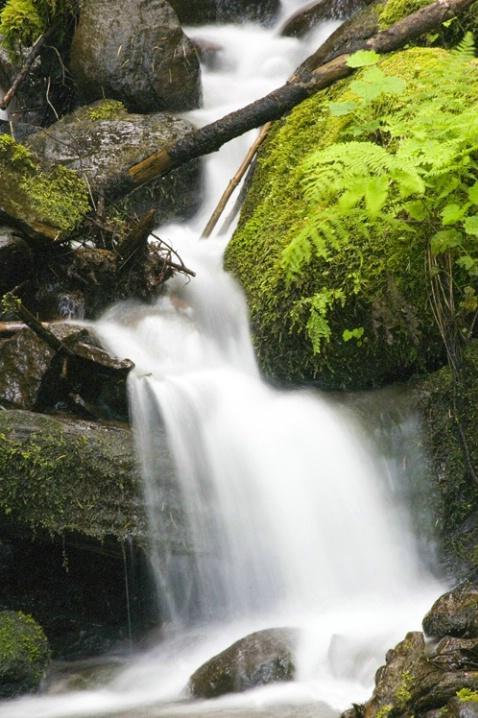 Wahkeena Falls #1 - ID: 2945938 © Tedd Cadd