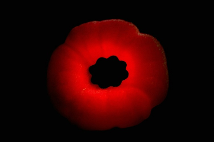 November the month of rememberance