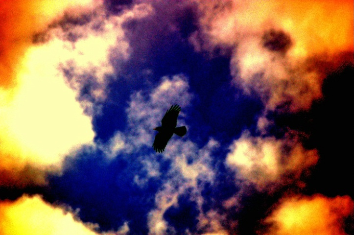 As the crow flies (Redux)