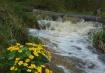 Marogold Creek 01