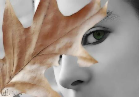 'Leaf' Me Alone
