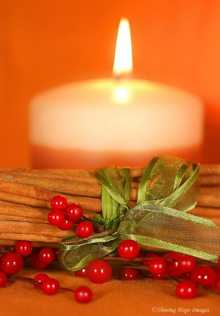 ~A Touch of Christmas~