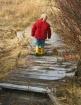Bridge less trave...