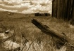 Bodie Fence