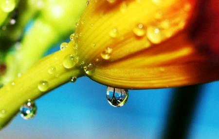 Raindrop reflected