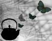 Butterfly Dreamin...