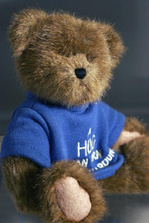Teddy Beara Portrait 3