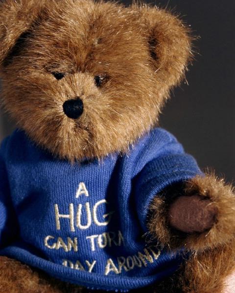 Teddy Beara Portrait 1