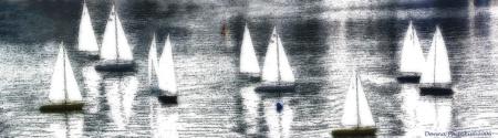 Dream Weaving on the Bay