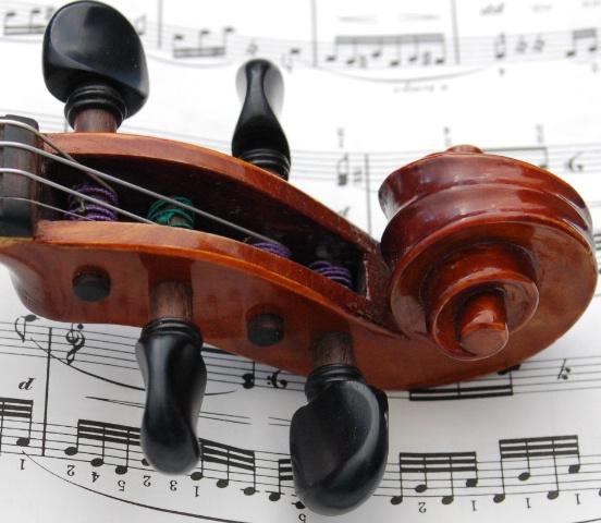 violin by choice