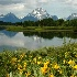 2Inspiration at Oxbow Bend - ID: 3097244 © Sherry Karr Adkins