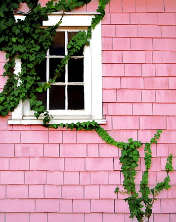 Detail of Pink House