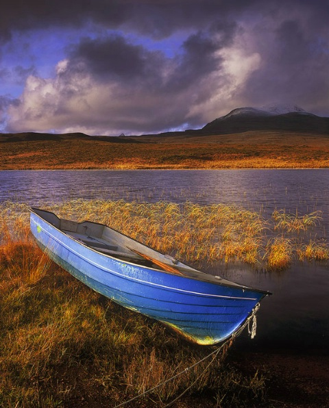 Wee Blue Boat