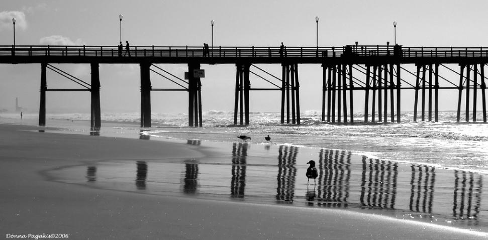 A Day at the Pier  - ID: 3153635 © Donna La Mattino Pagakis