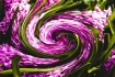 Swirled Colored H...