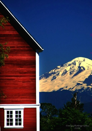 red barn and Mt. Baker