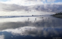 Low Tide Reflections