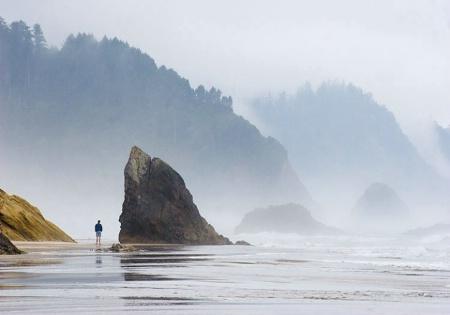 Coastal Wonderment