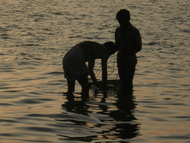 Two fishermen washing fishes