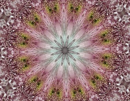 kaleidoscope mum