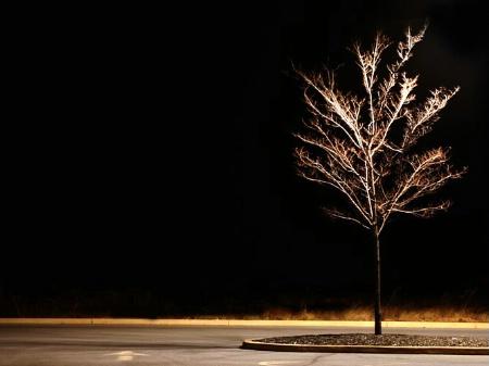 Target Tree