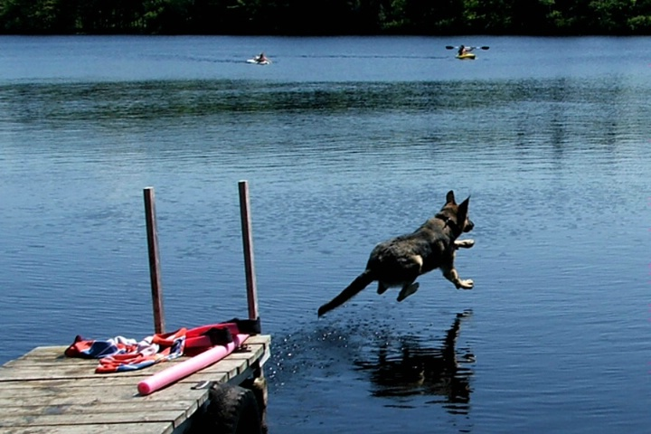 Go Jump in the Lake!