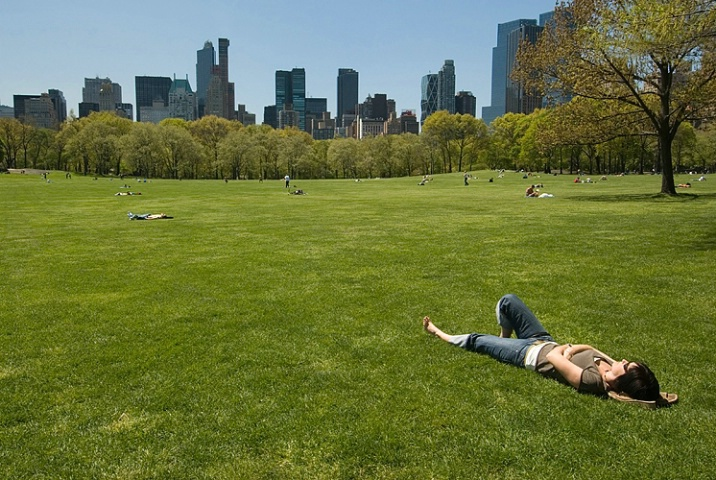 Relaxing at Sheep Meadow