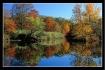 Fall Reflection 2
