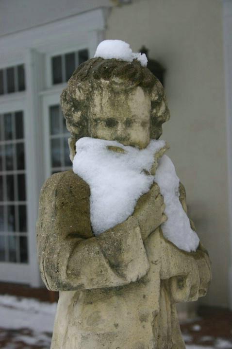 Snow Beard - ID: 3276791 © Wayne R. Wright