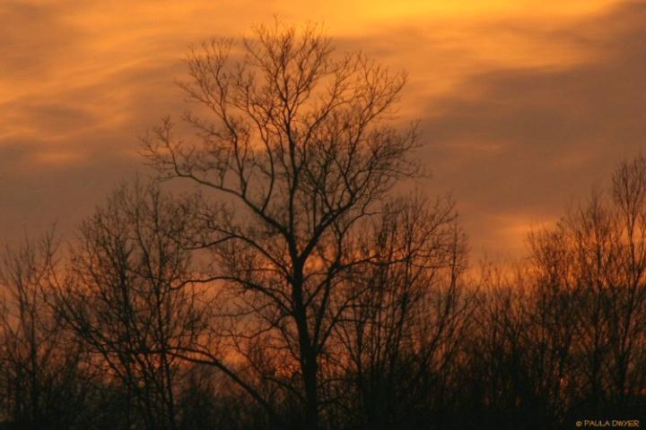 Colors of Sundown