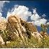 © Endre Balogh PhotoID # 3340518: Joshua Tree Rocks