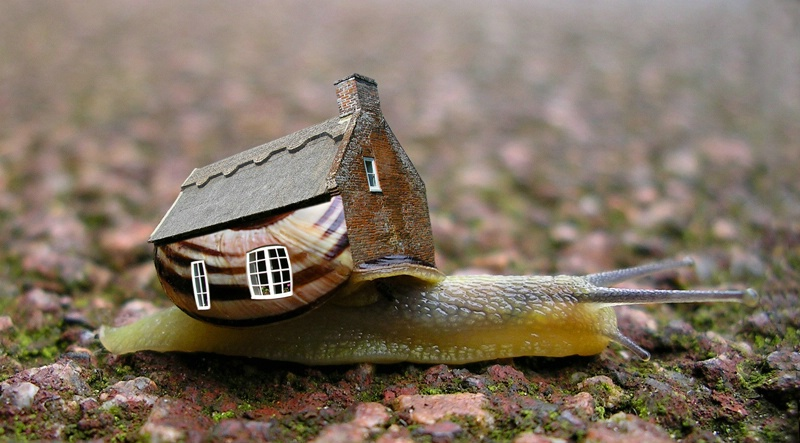 Slow Housing Market.