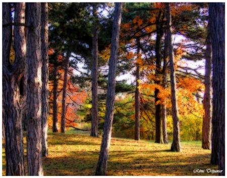 October High (retouché)