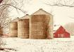 Family farm in sn...
