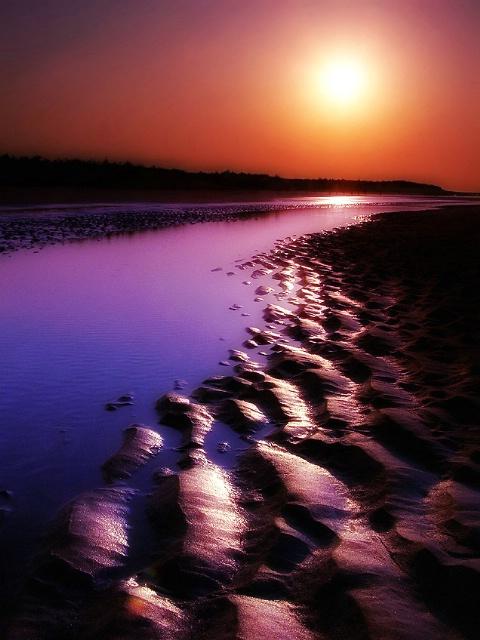 dream sandy beach