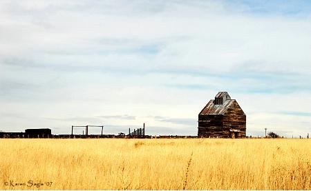 Texas Prairie