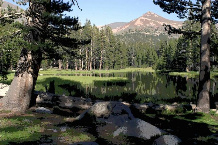 Yosemite National Park - ID: 3501689 © Jeri Schultz