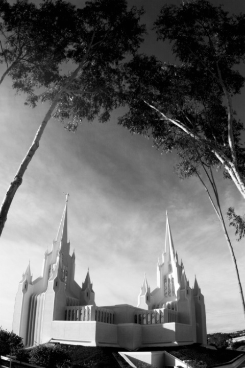 Trees framing the Temple (B&W)