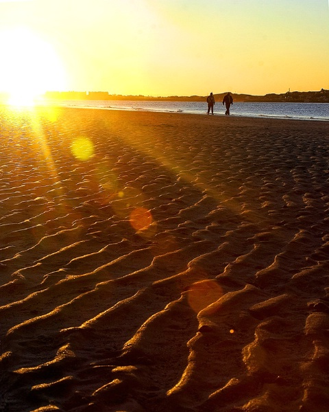 Strolling Sunset