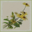 Wildflower Waterc...