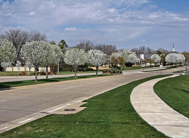 The Road Home - ID: 3563086 © Jeff Robinson