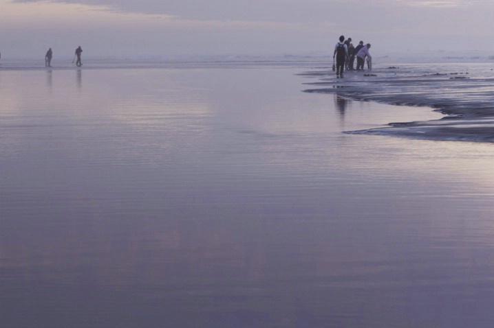 clam tide 1 - ID: 3573513 © Stuart May