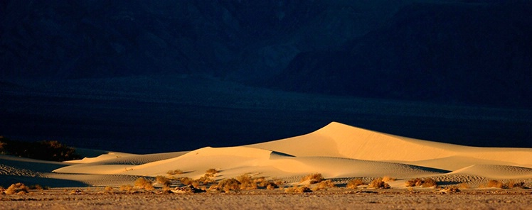 Dunes In The Distance - ID: 3575830 © Gary W. Potts