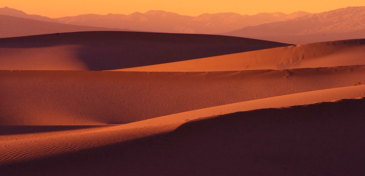 Dunes in Panorama - ID: 3575836 © Gary W. Potts