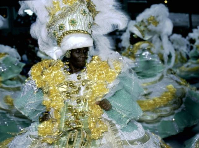 Carnaval de Rio, 2007 - ID: 3580339 © Govind p. Garg