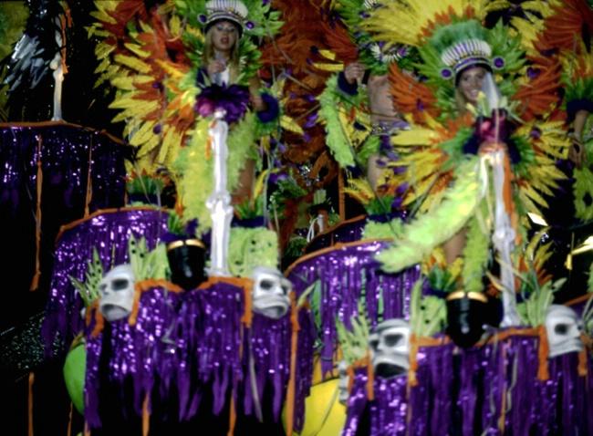 Carnaval de Rio, 2007 - ID: 3580340 © Govind p. Garg