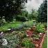 © Susan Leverty PhotoID # 3620613: Flower Garden Vertical