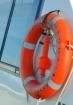 Orange & white, U...